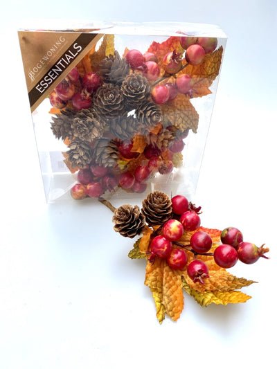 Box of decorative Autumnal Hips