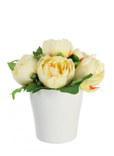 Potted Eternity Rose Arrangement - 19cm (Yellow)