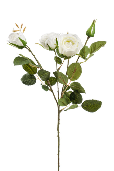 Peggy Rose Spray - 60cm (White)