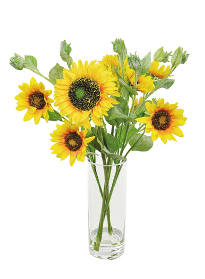 Sunflower In Cylinder Vase - 52cm