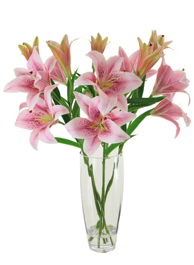 Asiatic Lily In Almond Vase - 63cm