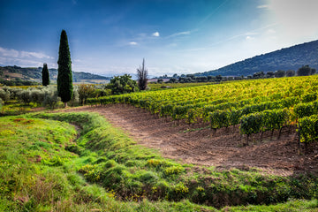 You, Your VGV and Montalcino. The wine trail of a lifetime.