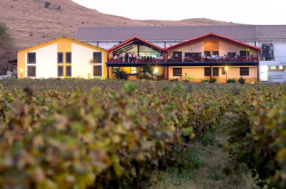 Sula_Vineyards photo credit: https://commons.wikimedia.org/w/index.php?title=User:Sulawines1234&action=edit&redlink=1