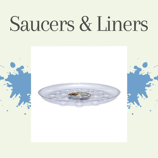 Saucers and Liners
