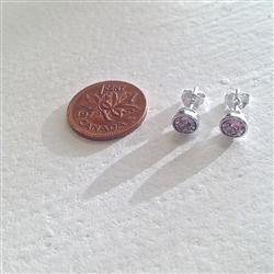 Earrings, Stud, Solstice SS Swarovski, Amethyst - Floral Acres Greenhouse & Garden Centre