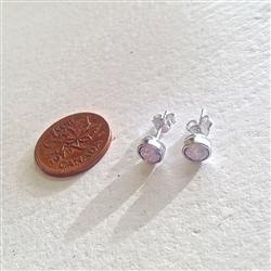 Earrings, Stud, Solstice SS Swarovski, Rose Opal - Floral Acres Greenhouse & Garden Centre