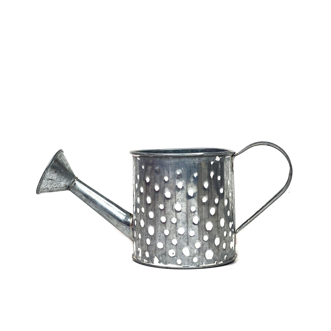 Pot, 4in, Zinc, Watering Can, White - Floral Acres Greenhouse & Garden Centre