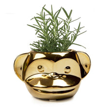 Load image into Gallery viewer, Funky Monkey Pot, 2.5in, Gold