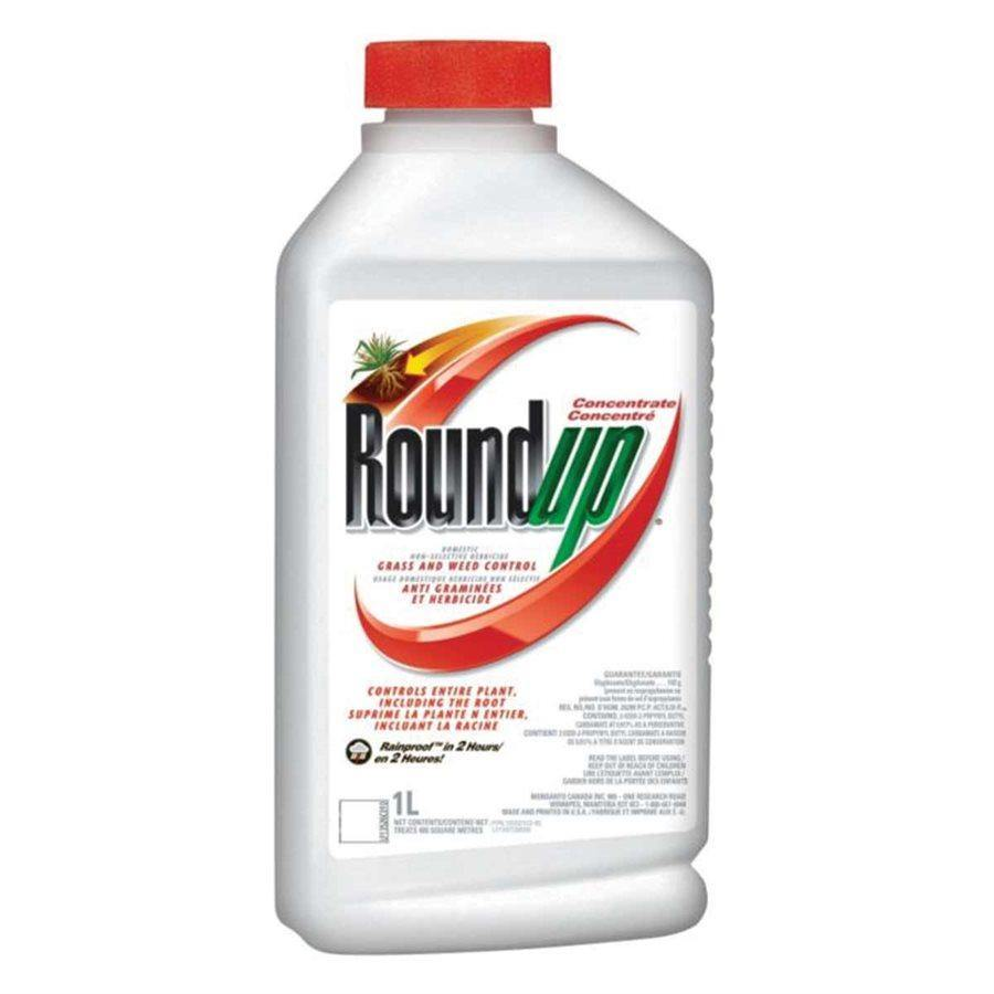 Roundup Grass and Weed Control Concentrate 1L - Floral Acres Greenhouse & Garden Centre