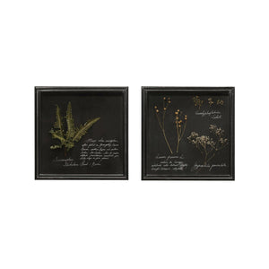 Wall Art, Dried Flowers w/ Glass Frame, 12in - Floral Acres Greenhouse & Garden Centre