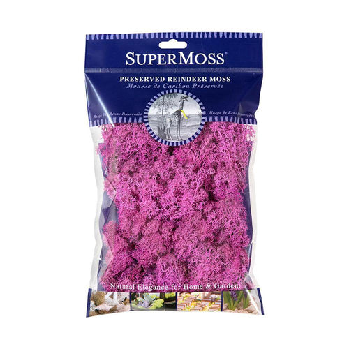 Reindeer Moss, Pink, Preserved - Floral Acres Greenhouse & Garden Centre