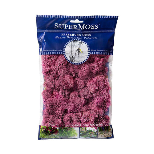 Reindeer Moss, Dusty Rose, Preserved - Floral Acres Greenhouse & Garden Centre