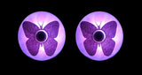 LED butterfly costume pasties