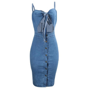 Anni Denim Dress