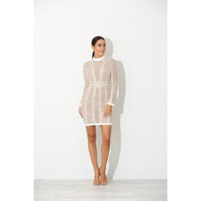 Cadence Nude Panel Bodycon Dress
