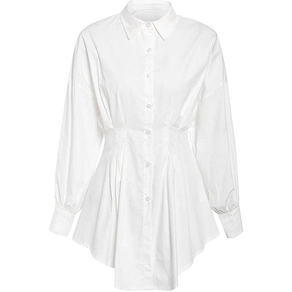 Dami Fitted Shirt Dress