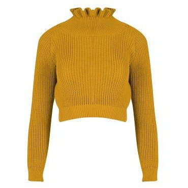 Effie Chunky Mustard Knit Crop Jumper