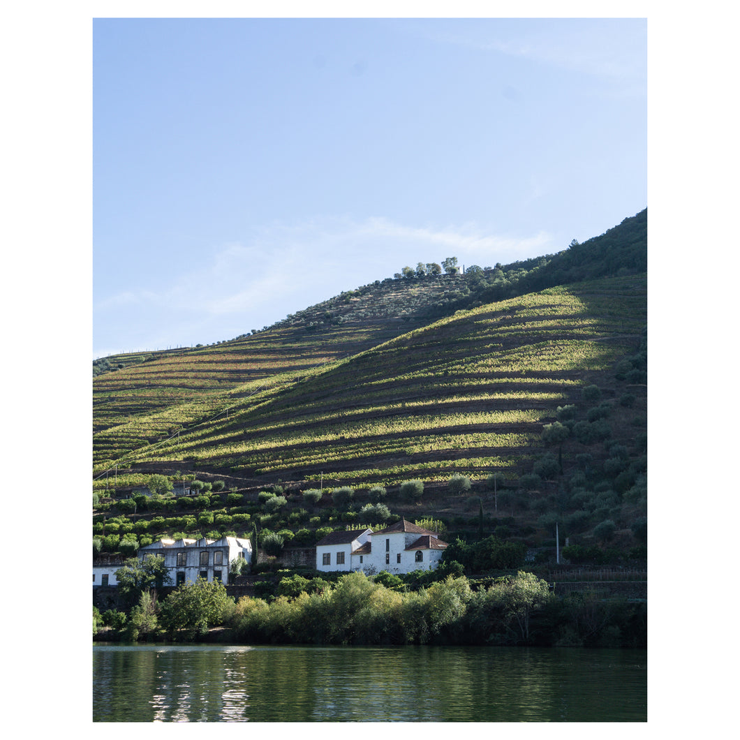 Winery on the Douro River