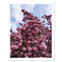 Load image into Gallery viewer, Spring in Paris II