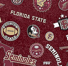 Load image into Gallery viewer, Let's Go Noles!