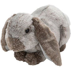 Plan L Lop Eared Rabbit