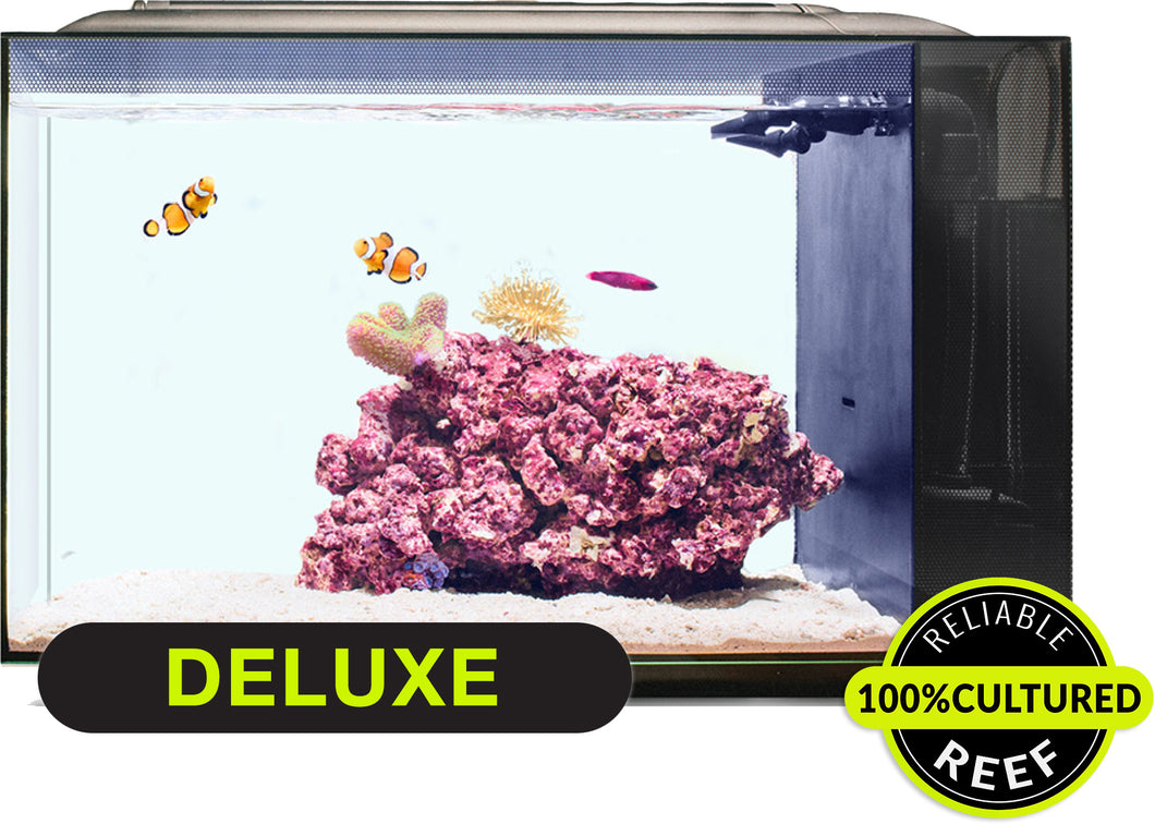 Deluxe Aquarium Package