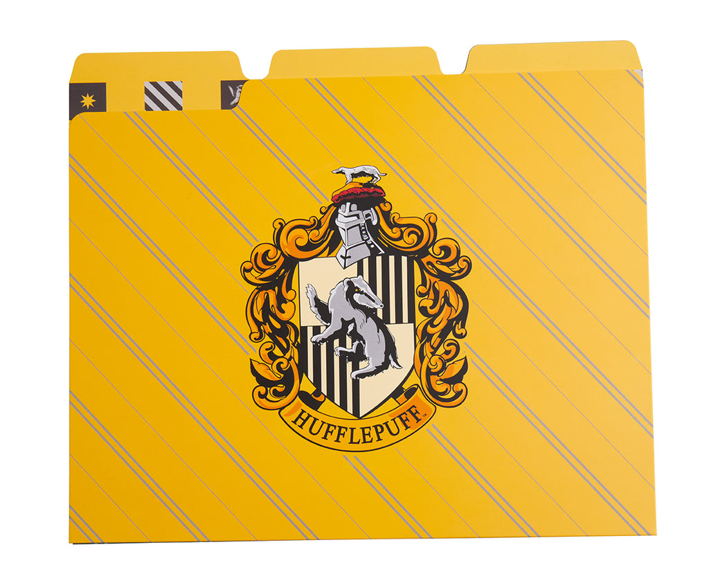 Harry Potter: Hogwarts Houses File Folder Set (Set of 12)