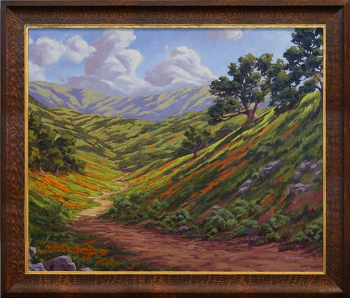 Rolling hills of California's backcountry with oaks and poppies.