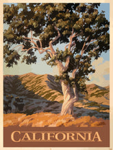 Load image into Gallery viewer, Classic California Eucalyptus Giclée Print on Fine Art Paper