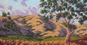 "California Hill Country Commission 72"" x 36"""