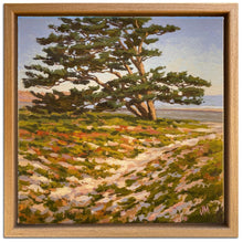 "Load image into Gallery viewer, Carlsbad Cypress 8.5"" x 8.5"""