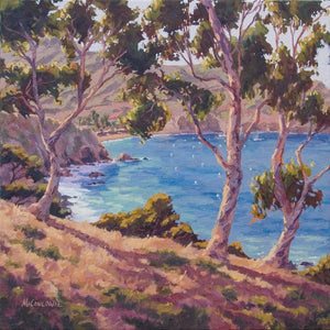 "Catalina Two Harbors 24"" x 24"""