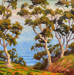 The hills above La Jolla Shores, California. Oil on canvas board of Eucalyptus trees and California poppies.