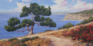 "Palos Verdes Cove Commission 60"" x 30"""