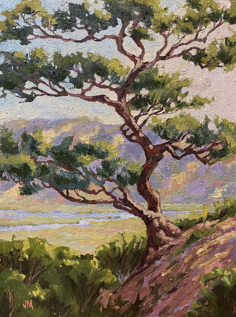 Torrey Pine Over the Reserve 9