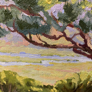 "Torrey Pine Over the Reserve 9"" x 12"""
