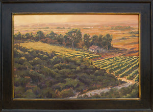 "Vineyard at Sunset 36"" x 24"""