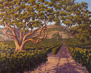 "Vineyard at Dusk 50"" x 40"""