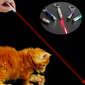 Interactive 2 in1 LED Pet Toy