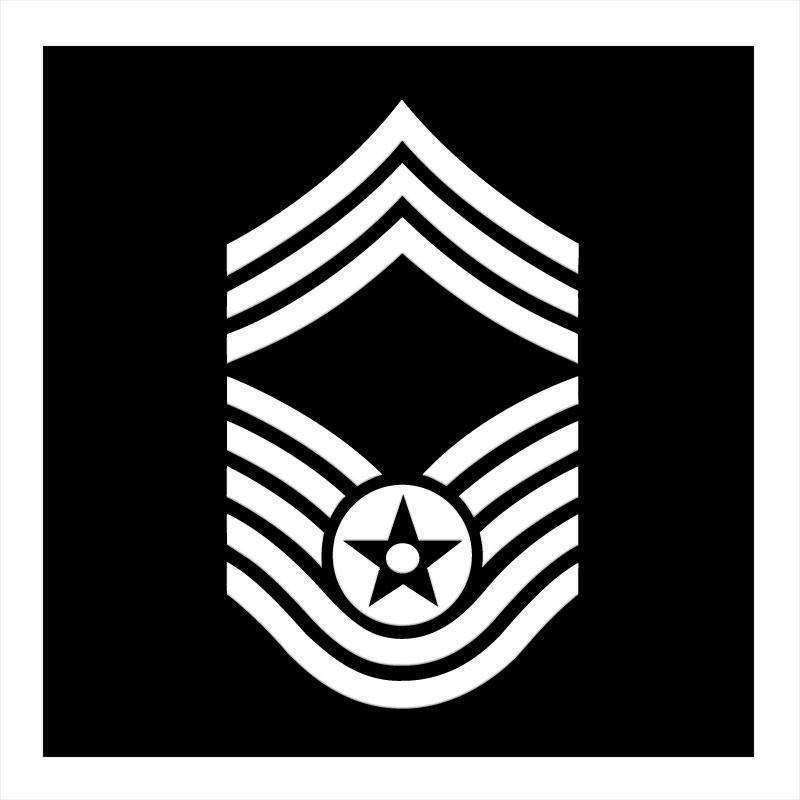 "OPSGEAR:Air Force Enlisted Ranks 7"" Vinyl"
