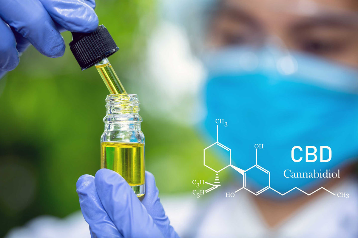 CBD Researcher with tincture