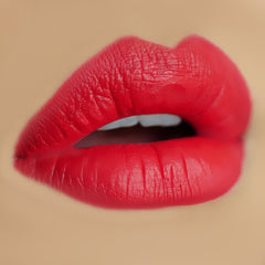 Makeup Revolution Salvation Velvet Lip Lacquer - Keep Trying for You - Lip Swatch