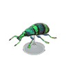 Blue Weevil Beetle Model
