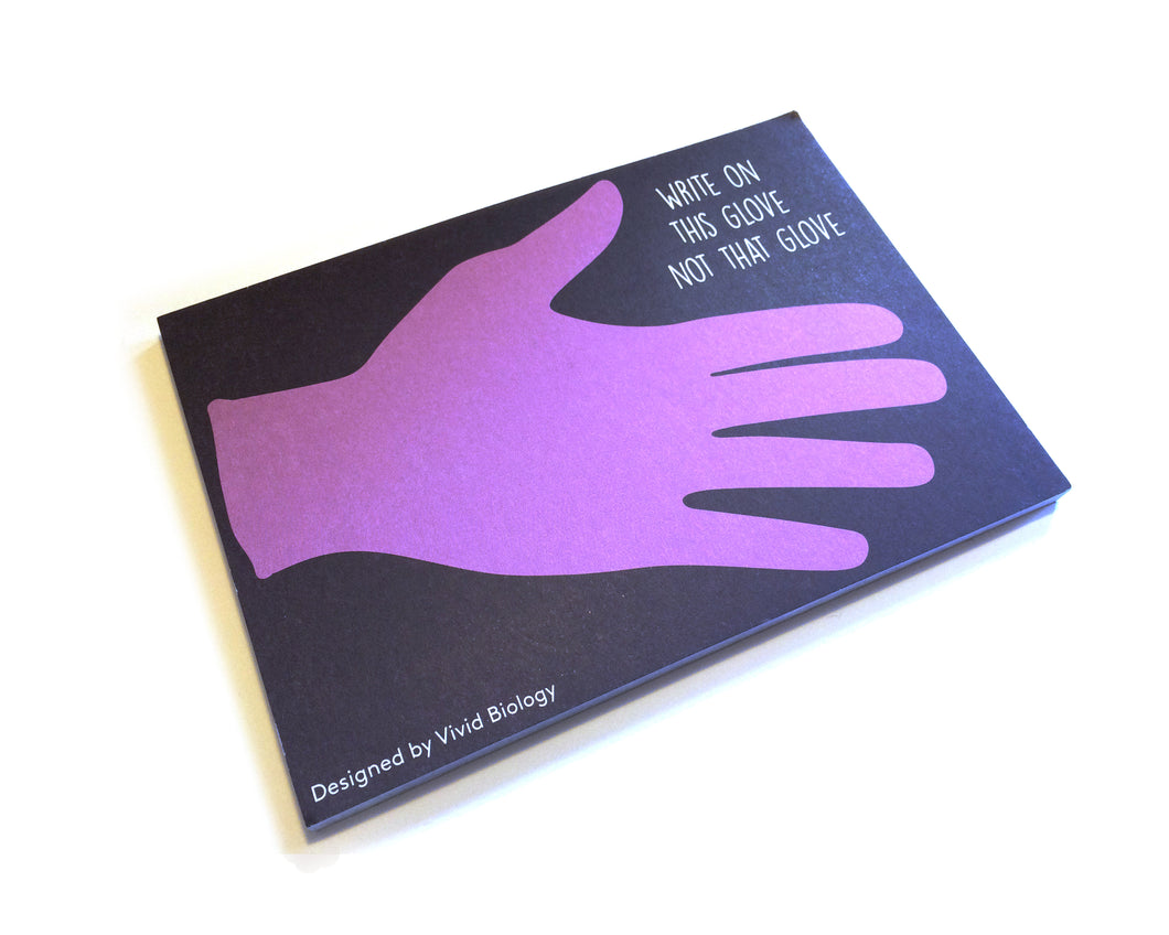 This Glove notepad (Box of 12) - Boutique Science