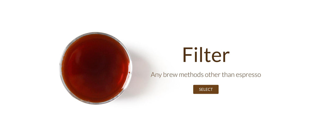 filter roast coffee beans