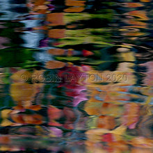 Load image into Gallery viewer, koi pond #2