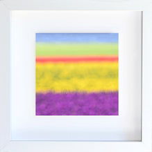 Load image into Gallery viewer, rainbow tulips
