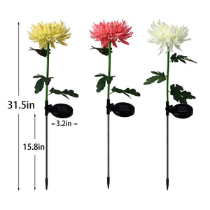 🤱MOTHER'S DAY SPECIAL 50% OFF/🏡CHRYSANTHEMUM SOLAR GARDEN LIGHT💐