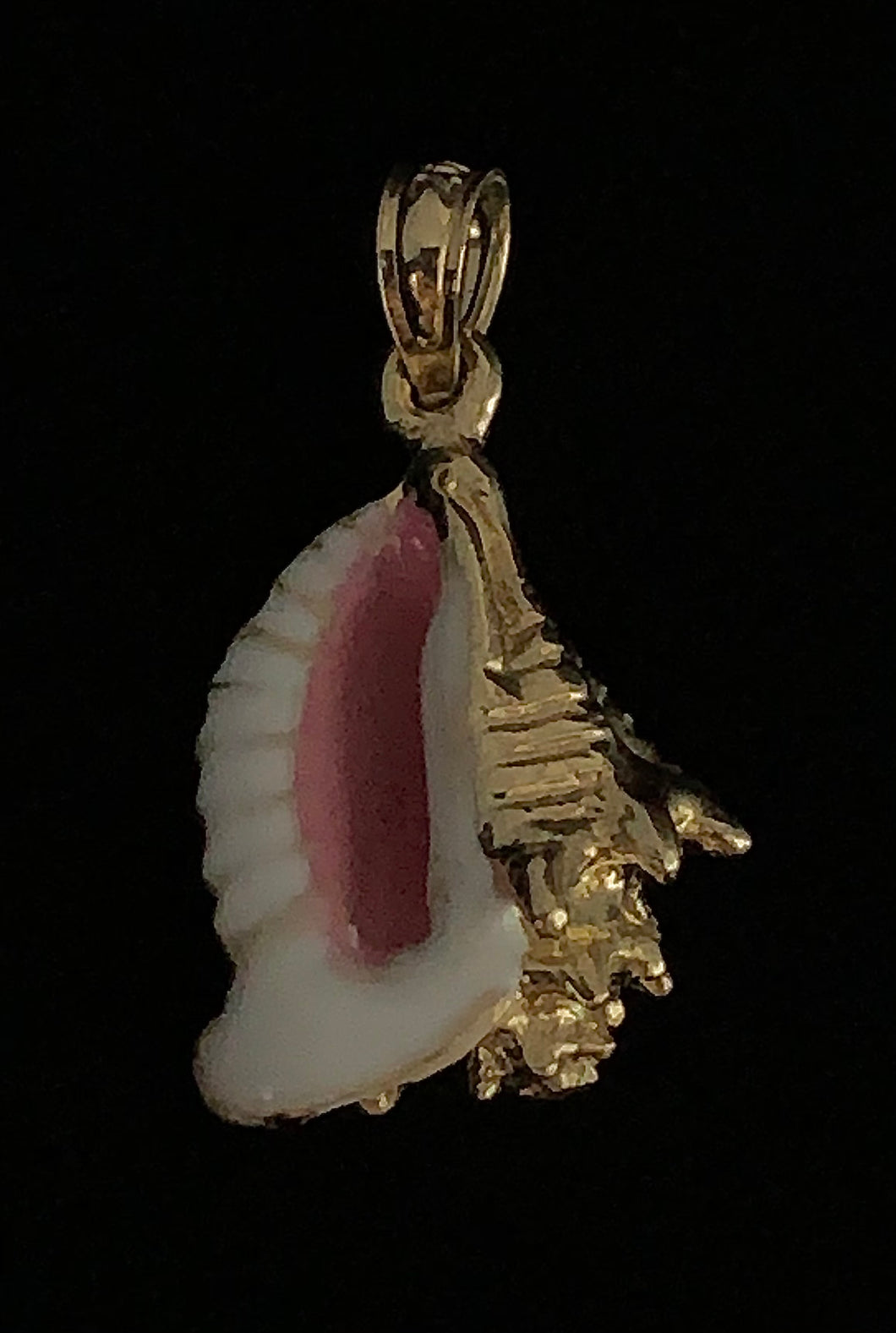 Conch Shell Pendant - Ridged