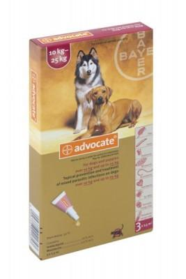 ADVOCATE LRG DOG (3 X 2.5ML) 10-25kg RED